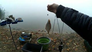 Рыбалка и отдых осенью
