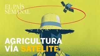 Agricultura vía satélite | Ciencia sin ficción | El País Semanal