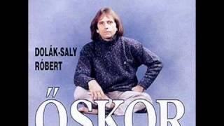 Dolák-Saly Róbert Még itt vagyunk.wmv