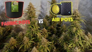 Best Pot for Growing Cannabis:  Fabric Smart Pots vs SuperRoots Air Pots