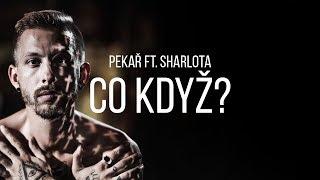 Pekař Co Když Feat Sharlota OFFICIAL 4K