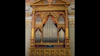 Aus Tiefer Not Schrei Ich Zu Dir  Bwv 686 ( 6v ped. doppio) - J.S.Bach (Aldo Locatelli)
