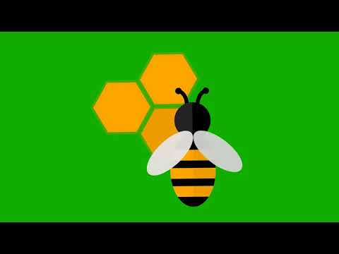 Agriculture & Farming Animated Honey Bee Green Screen