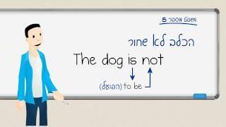 לימוד אנגלית – תרגול no not don't doesn't