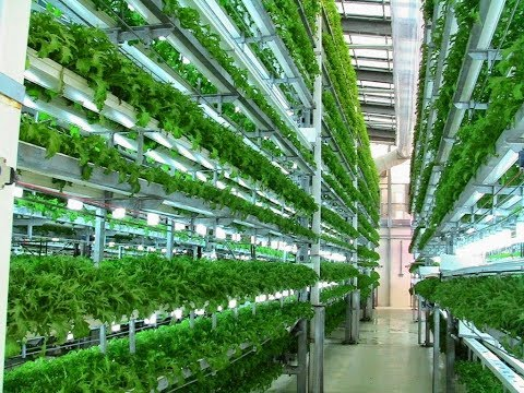 Fritz Schroeder, PhD - Recent Innovations in Vertical Farming Infrastructure