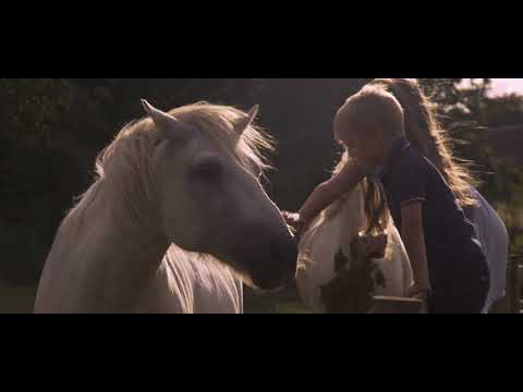 Paul Weller - White Horses (Official Video)