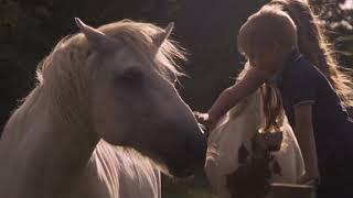 Paul Weller - White Horses (Official Video)