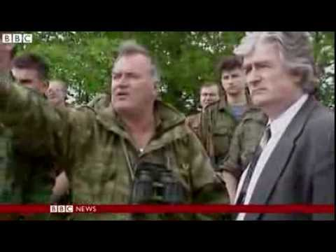 BBC News   Karadzic calls on Mladic for Hague trial