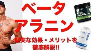 【ベータアラニン】堅実な効果と摂取するメリットを徹底解説!!