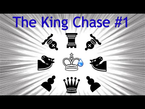 The Mother of all King Hunts | The King Chase #1