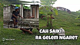 Baixar Cah Saiki Ra Gelem Ngaret | BGM Channel