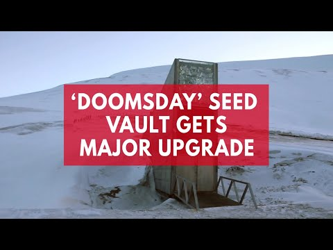 Climate Change prompts $12.7m upgrade to 'doomsday' Arctic seed vault