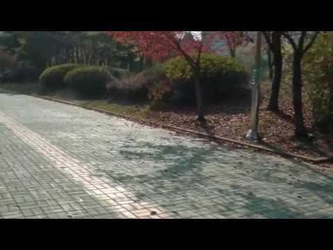 Южная Корея/ Визы в Южную Корею/ Оформление Виз /
