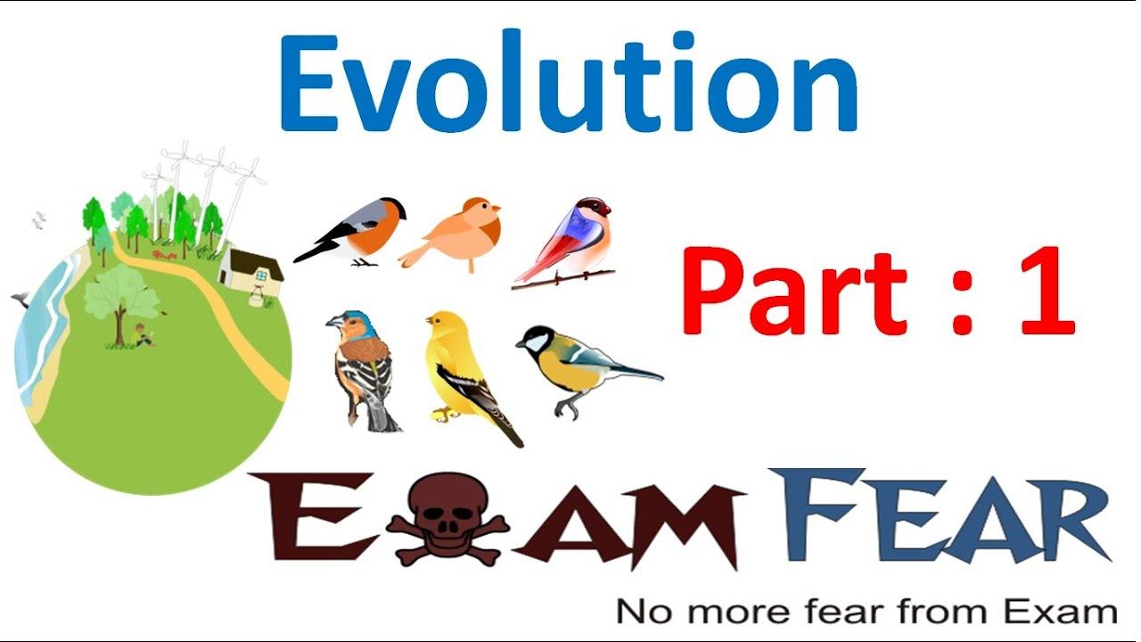 Biology Evolution Part 1 Introduction Class 12 Xii Youtube Genetics Animal Mendelian Diagram Chickens Vintageprintable