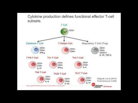 Nicole Weit - Advanced flow cytometric analysis of human T cell memory subsets