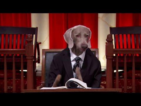 DePierre V. United States: Oral Argument - February 28, 2011