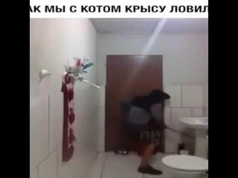 Ловлю с кошкой крысу)))