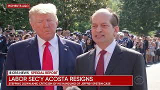 Labor Secretary Acosta resigns amid fallout over Epstein plea deal