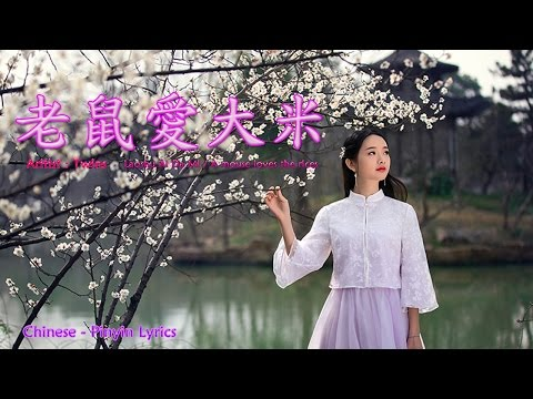 Lao shu Ai Da Mi( 老鼠愛大米) - A Mouse Loves The Rices - Twins