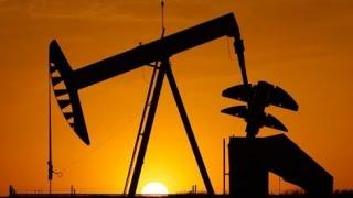 Современное состояние проблемы происхождения углеводородов. Гаврилов В.П., РГУ нефти и газа