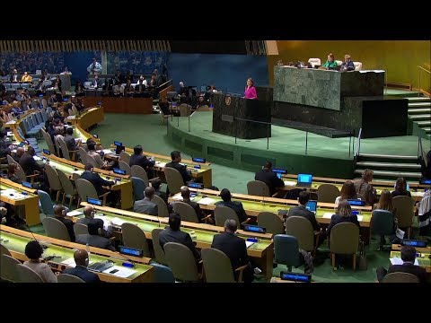 Remarks at a UN General Assembly Meeting on Cuba