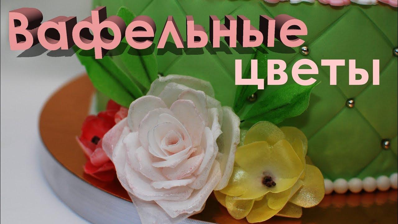 Цветы из вафельной бумаги своими руками 791
