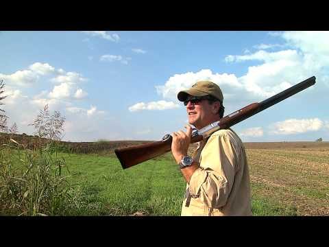 A fast flying, fast shooting, Kentucky Dove Hunt