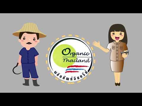 การผลิตข้าวอินทรีย์ตามมาตรฐาน Organic Thailand