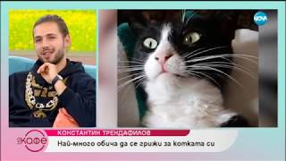 """На кафе"" Константин Трендафилов - Papi Hans (08.11.2018)"