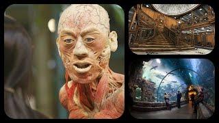 Bodies,Titanic & Shark Reef Aquarium..(3 for $57 Deal) - Las Vegas