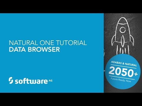 Natural ONE Tutorial - Data Browser