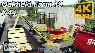 Animal care & planting cotton, new equipment | Oakfield Farm 19 | FS19 | TimeLapse #44 | 4K(UltraHD)