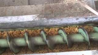 pkv mini dal mill shriram associates akola manufacturing since 20 years