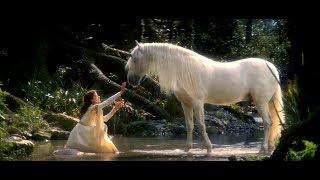 LINDA RONSTADT ღ WINTER LIGHT ღ  SECRET GARDEN (CLIP - LEYEND) LYRICS HD