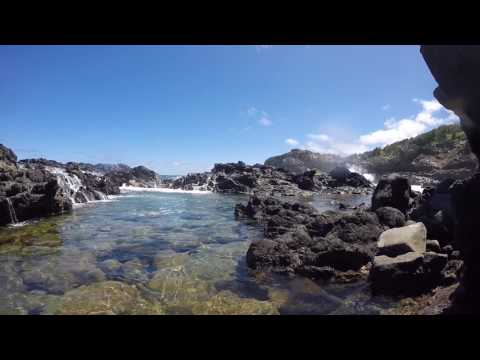 Maui: Tide Pool at Lipoa Point