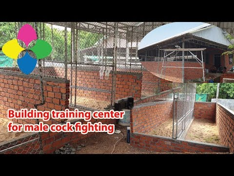Building Training Center For Male Cock Fighting .70% Done.