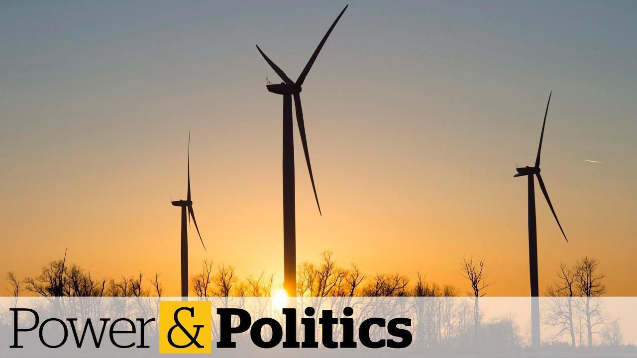 Green Party promises to transition Canada to a green economy | Power & Politics