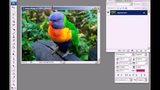 урок 4 - Понятие цвета в Фотошопе