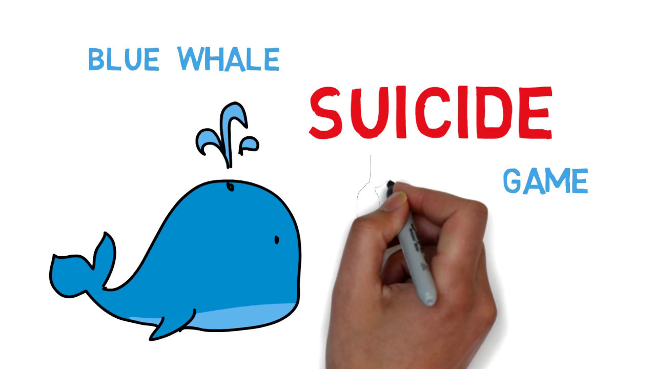 how to play blue whale game