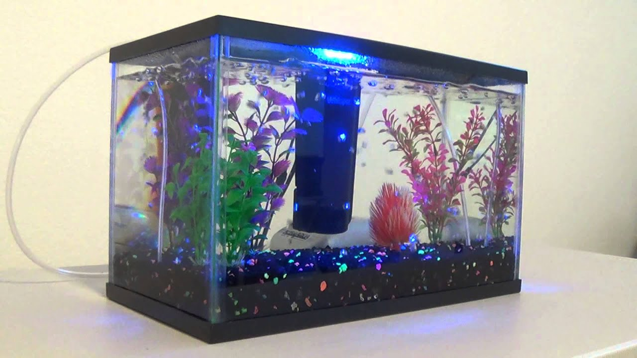 Better than the best air stone for aquariums. Air Injection ...