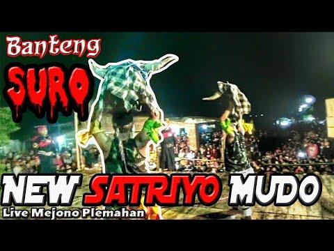 Banteng Suro Solah Mantap Jaranan New Satriyo Mudo Live Mejono Plemahan (Bantengan khas Nganjuk) |  Mp3 Download