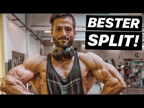 Bester Muskelaufbau