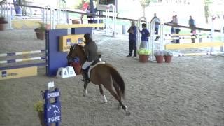 CSN Circuito Indoor Porto Alegre - DESEMPATE - Laura Jacques Fernandes e Romeu Cristal