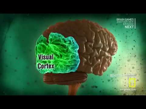 Brain Games  1  Watch This (this is mind blowing Perception)