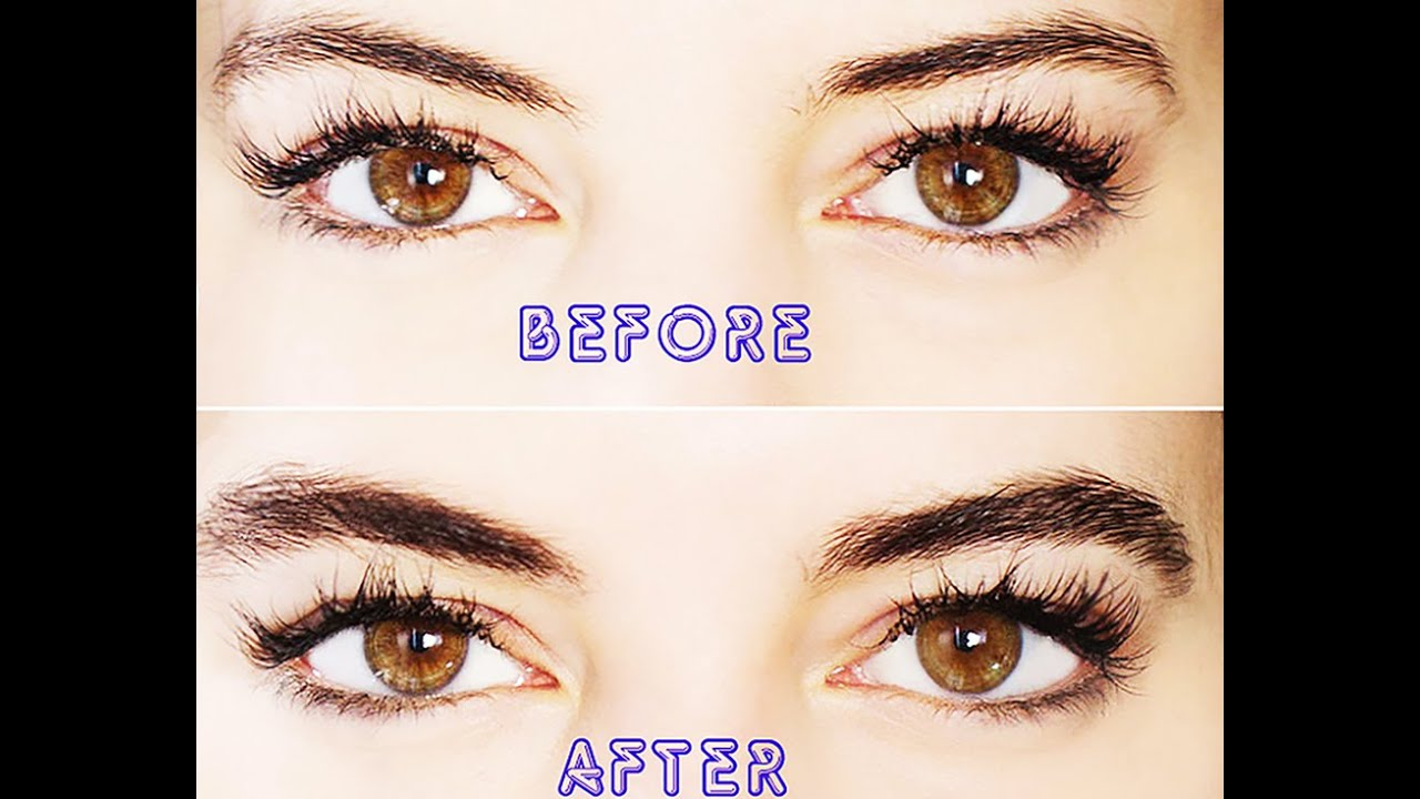 How To Grow Eyebrows In Just 10 Days Gurranteed Youtube
