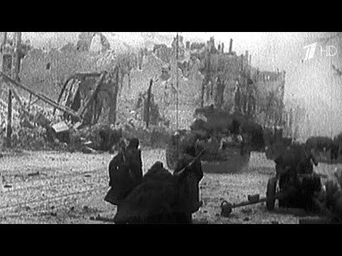 В Польше заявили, что СССР оккупировал себя сам, а полякам под Гитлером жилось бы лучше.