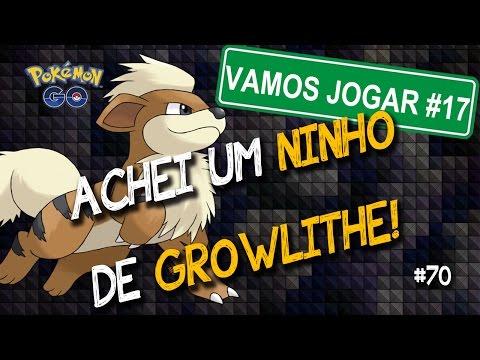 Achei um ninho de Growlithe e quase fui parar no hospital! Pokemon Go Gameplay  - Level32 -