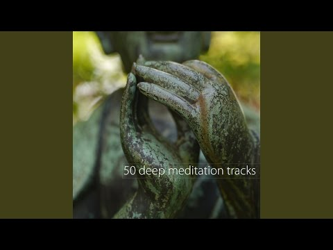 Soothing Calming Music for 5 Minutes Meditation