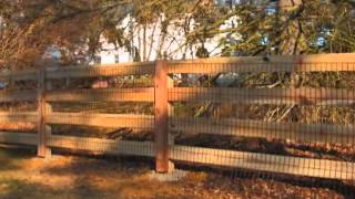 Pioneer Fence Kentucky Post And Board Fence Installations