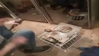Работа холодильщиков